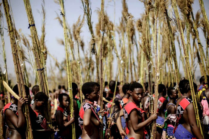 Swaziland Ceremonie en Festival