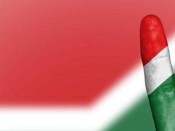 Vredesteken voor Zuid-Afrika
