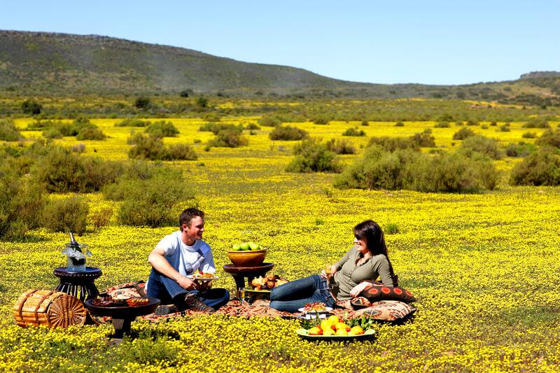 Picknicken in Namaqualand ~ Bloemenroute