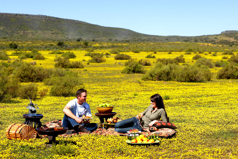 Picknicken in Namaqualand ~ Bloemenroute